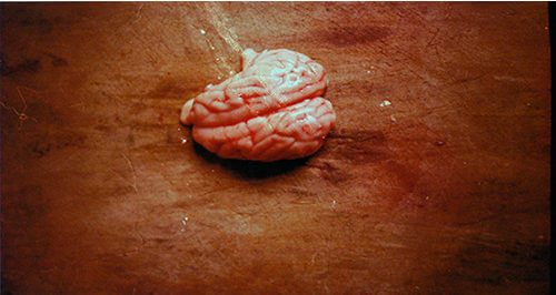 'Steamed pig's brain' by Zane Mellupe, 2011