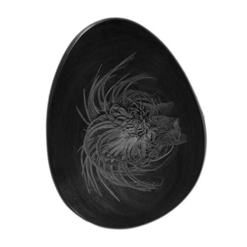 'Human egg 2' by Zane Mellupe, 2016